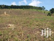 Land At Madudu Mubende For Sale | Land & Plots For Sale for sale in Central Region, Mubende