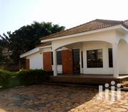 Kololo 4 Bedroomed House for Rent at 1.5m | Houses & Apartments For Rent for sale in Central Region, Kampala