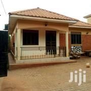 Kira Modern Three Bedroom Standalone House For Rent At 650k | Houses & Apartments For Rent for sale in Central Region, Kampala