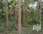 Land In Nampundwe For Sale | Land & Plots For Sale for sale in Central Region, Wakiso