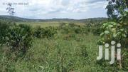 11 Acres Land Near Tarmac | Land & Plots For Sale for sale in Central Region, Kampala