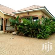 Najjera Executive New Self Contained Double Room House | Houses & Apartments For Rent for sale in Central Region, Kampala