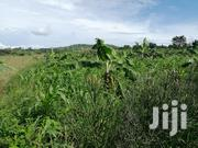 100 Acres in Buwama Before Equator | Land & Plots For Sale for sale in Central Region, Mpigi