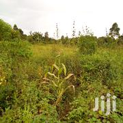 2 Plots Of Land 50 X 100 Each At Namagoma For Sale | Land & Plots For Sale for sale in Central Region, Wakiso
