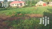 50 by 100 Plot for Sale With Ready Title in Jomayi Estates | Land & Plots For Sale for sale in Central Region, Mukono