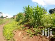 Gayaza 20 Decimals For Sale | Land & Plots For Sale for sale in Central Region, Kampala