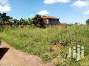 Gayaza- Naalya 50 By 100 Land For Sale | Land & Plots For Sale for sale in Central Region, Kampala