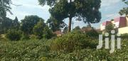 Plots for Quick and Cheap Sale in Bukerere- Mukono | Land & Plots For Sale for sale in Central Region, Wakiso