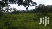 Half Acre for Sale With a Ready Tittle in Bukerere | Land & Plots For Sale for sale in Central Region, Kampala