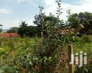 Plot in Munyonyo | Land & Plots For Sale for sale in Central Region, Wakiso