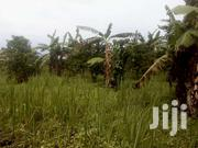 28 Titled Acres In Mpigi 6.5km From Mpigi Town/Off Main Masaka Rd | Land & Plots For Sale for sale in Central Region, Mpigi
