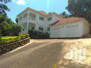 Very Nice Doible Stround Home For Rent Heart Of Buziga Uphill Lakeview | Houses & Apartments For Rent for sale in Central Region, Kampala