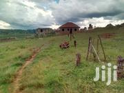 Very Hot Plot With Very Gd View On Sale Buloba Town With Private Title | Land & Plots For Sale for sale in Central Region, Kampala