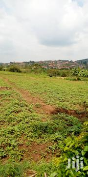 1 and a Half Acres in Kyetume 12km From Kiwenda   Land & Plots For Sale for sale in Central Region, Wakiso