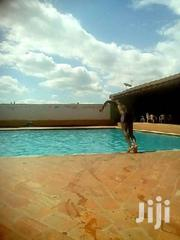 Swiming Lessons | Classes & Courses for sale in Central Region, Kampala