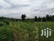 30 Acres in Kakerenge Bombo Road | Land & Plots For Sale for sale in Central Region, Luweero