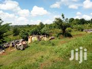 Land In Kasangati-Gayaza For Sale | Land & Plots For Sale for sale in Central Region, Kampala