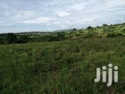 Land In Kiwujjo Hoima Road For Sale | Land & Plots For Sale for sale in Central Region, Wakiso