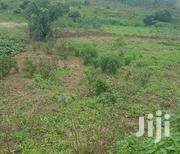 Plot Near Nakifuma Town With Ready Title | Land & Plots For Sale for sale in Central Region, Mukono