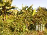 Land In Nakawuka Town For Sale | Land & Plots For Sale for sale in Central Region, Kampala