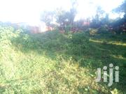 Namugongo 50X100 Plots Available on Sale | Land & Plots For Sale for sale in Central Region, Kampala