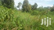 1 Square Mile of Land Lo Ated in Kitwe Kayunga | Land & Plots For Sale for sale in Central Region, Kampala