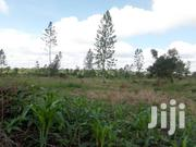 New Land Estate At Kakiri Gobero For Sale | Land & Plots For Sale for sale in Central Region, Kampala