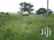 300 Acres of Agricultural Land for Sale at Bugiri District | Land & Plots For Sale for sale in Eastern Region, Jinja