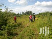 Plot - Land For Sale In Busika 20 Decimals | Land & Plots For Sale for sale in Central Region, Kampala