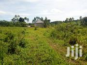Plot Of Land For Sale In Busika 100/100fts | Land & Plots For Sale for sale in Central Region, Kampala