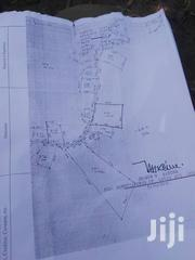 1.25 Acres of Milo Land | Land & Plots For Sale for sale in Central Region, Wakiso