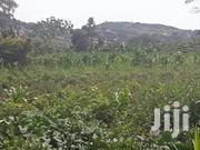 Christmas Offer Comes Early | Land & Plots For Sale for sale in Central Region, Wakiso