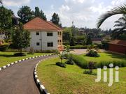 House In Naguru For Rent   Houses & Apartments For Rent for sale in Central Region, Kampala