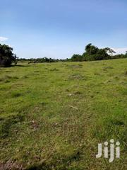 Land 36 Acres In Kyotera Uganda On Masaka Road | Land & Plots For Sale for sale in Central Region, Kampala