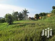 Cheap 50x100ft of Land at 60m in Kirinya, Bweyogerere Along Bukasa Rd   Land & Plots For Sale for sale in Central Region, Kampala
