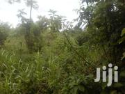 4 Titled Acres In Nakaseke 12km From Ssemuto Town At 6.5M Negotiable | Land & Plots For Sale for sale in Western Region, Kisoro