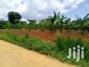 5acres On Sale Located At Matugga Sayi Branch Off  Gombe Or | Houses & Apartments For Sale for sale in Central Region, Kampala