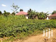 40 Decimals Plot of Land for Sale in Najjera - Kira | Land & Plots For Sale for sale in Central Region, Kampala
