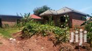 House For Sell With Boys Quaters On 50ft By 100ft In Gayaza Makeeke | Houses & Apartments For Sale for sale in Central Region, Wakiso