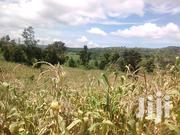 50 a Res of Land for Sale in Mate Hoima Road | Land & Plots For Sale for sale in Central Region, Wakiso
