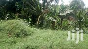 3 Acres on Bombo Road | Land & Plots For Sale for sale in Central Region, Kampala