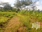100/100ft Plot of Land for Sale in Namugongo-Budugara | Land & Plots For Sale for sale in Central Region, Kampala