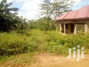 Plot Of Land For Sale In Kira - Nsasa | Land & Plots For Sale for sale in Central Region, Kampala