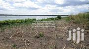 50 ACRES OF LAND FOR SALE ALONG THE NILE AT NAMASAGALI KAMULI | Land & Plots For Sale for sale in Eastern Region, Kamuli