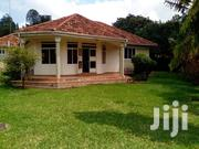 Naguru Four Bedrooms House For Rent | Houses & Apartments For Rent for sale in Central Region, Kampala
