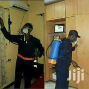 Fumigation, Spraying Of Pests And Insects | Automotive Services for sale in Central Region, Kampala