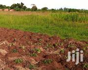 Land At Mityana Road Muduuma For Sale | Land & Plots For Sale for sale in Central Region, Mpigi