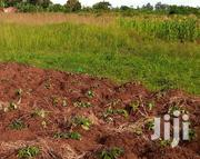 🇺🇬MASAKA ROAD KAMENGO: 5 Acres at 8m/Acre (Negotiable)🇺🇬 | Land & Plots For Sale for sale in Central Region, Mpigi