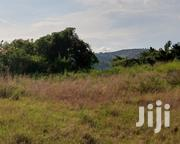 🇺🇬BOMBO TOWN (#Prime Land): 1.8 Acres at 30m/Acre (Negotiable)🇺🇬 | Land & Plots For Sale for sale in Central Region, Luweero