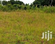 🇺🇬MASAKA ROAD NAKILEBE: 50x100 at 20m (Negotiable) | Land & Plots For Sale for sale in Central Region, Mpigi